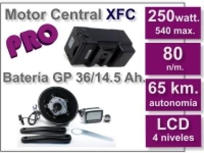 Kit Motor XFC PRO 36 V. con batería LF 9 Ah.